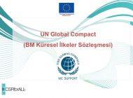 Jean-Pascal Tricoire, Birleşmiş Milletler Küresel Yönetim Kurulu'na Atandı