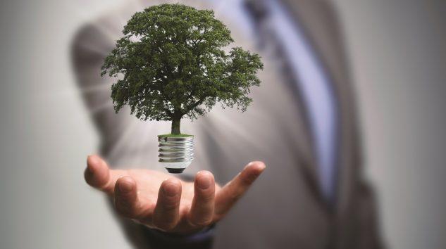 Yenilenebilir Enerjiye 380 Milyon Dolarlık Yatırım Planı! Ortadoğu Holding'den yatırım atağı
